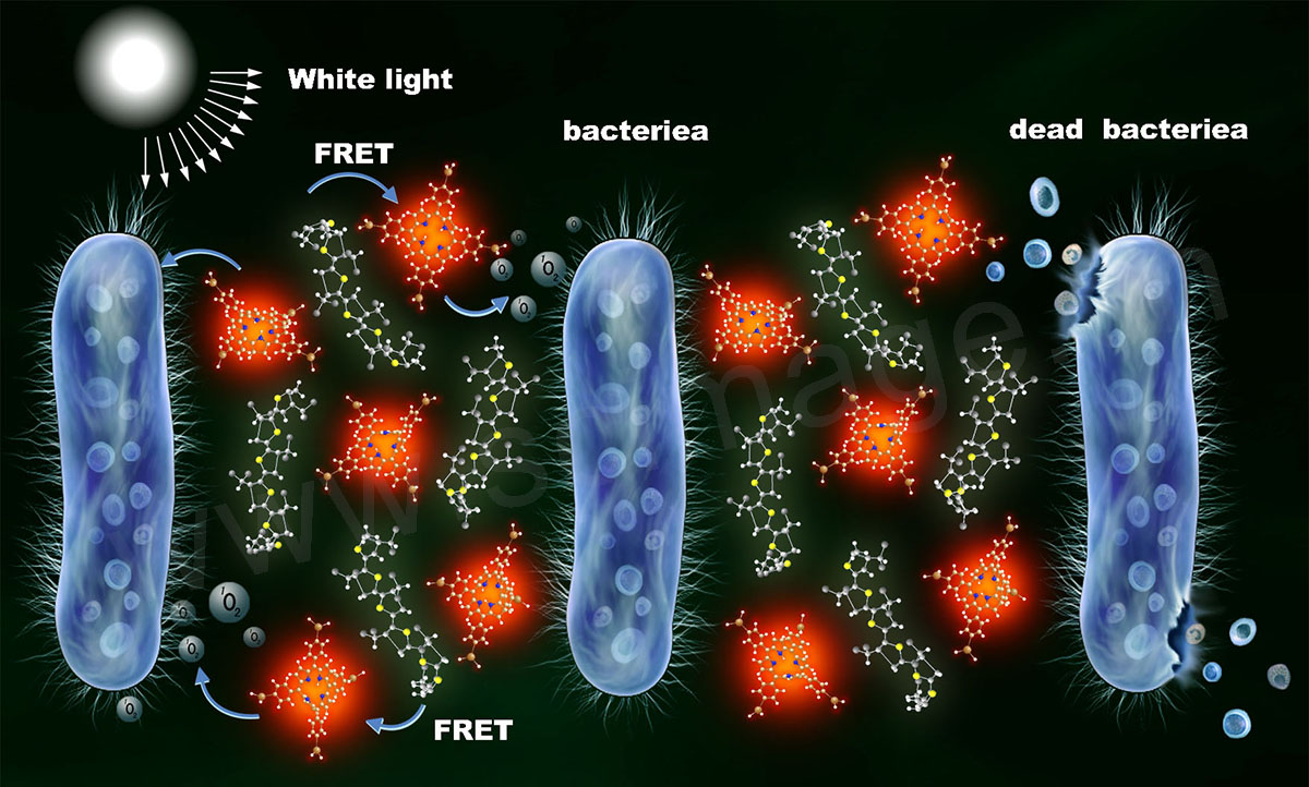 光化学杀菌