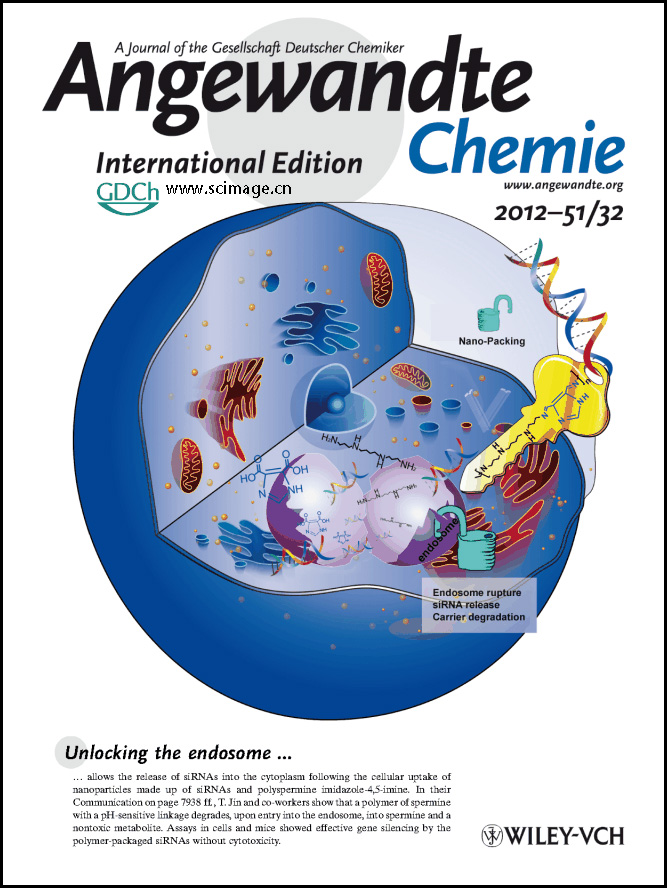 Inside Cover: Polyspermine Imidazole-4,5-imine, a Chemically Dynamic and Biologically Responsive Carrier System for Intracellular Delivery of siRNA