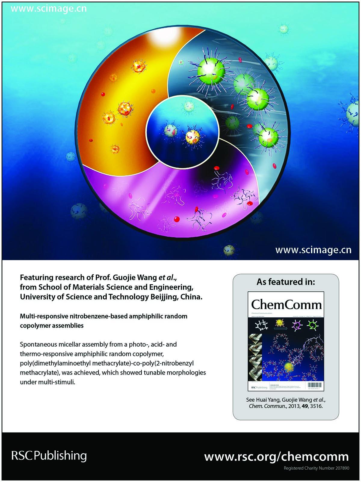 Multi-responsive nitrobenzene-based amphiphilic random copolymer assemblies