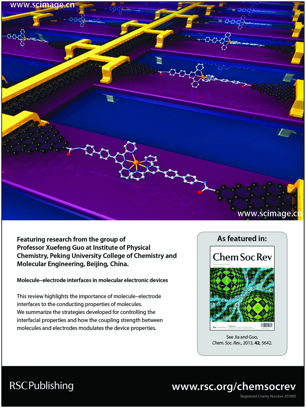Molecule–electrode interfaces in molecular electronic devices