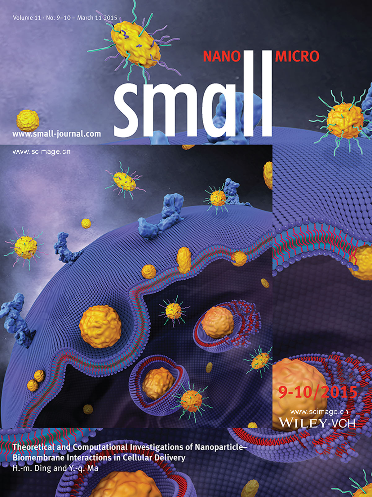 Cellular Uptake: Theoretical and Computational Investigations of Nanoparticle–Biomembrane Interactions in Cellular Delivery (Small 9-10/2015) (page 1014)