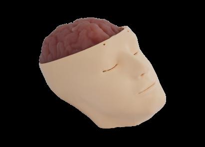 颅脑血肿清除训练模型 SJ02A004