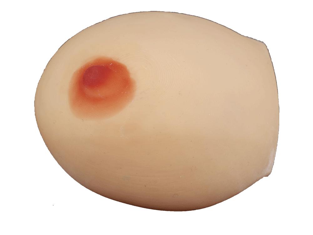 乳房肿瘤切除训练模型PW02A001