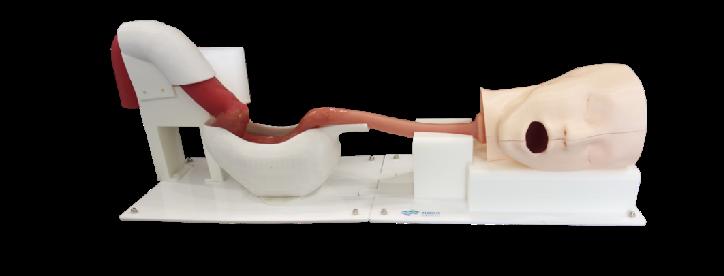 消化内镜训练模型XH02A003