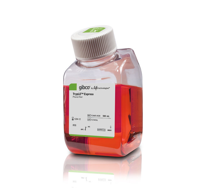 GIBCO-12605028-TrypLE™ Express Enzyme (1X), phenol red