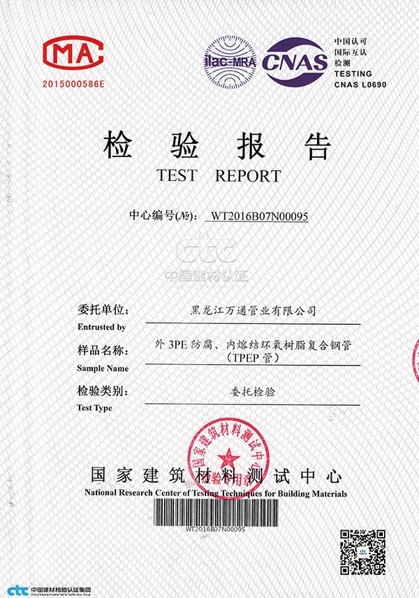TPEP_检验报告