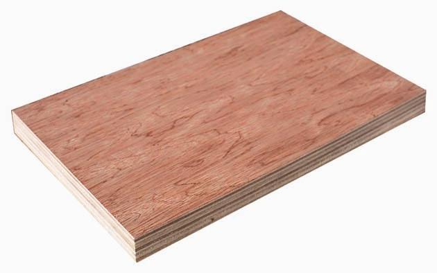 Bintangor plywood 冰糖果胶合板