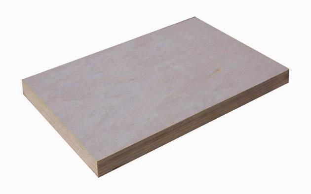 Poplar plywood 杨木胶合板