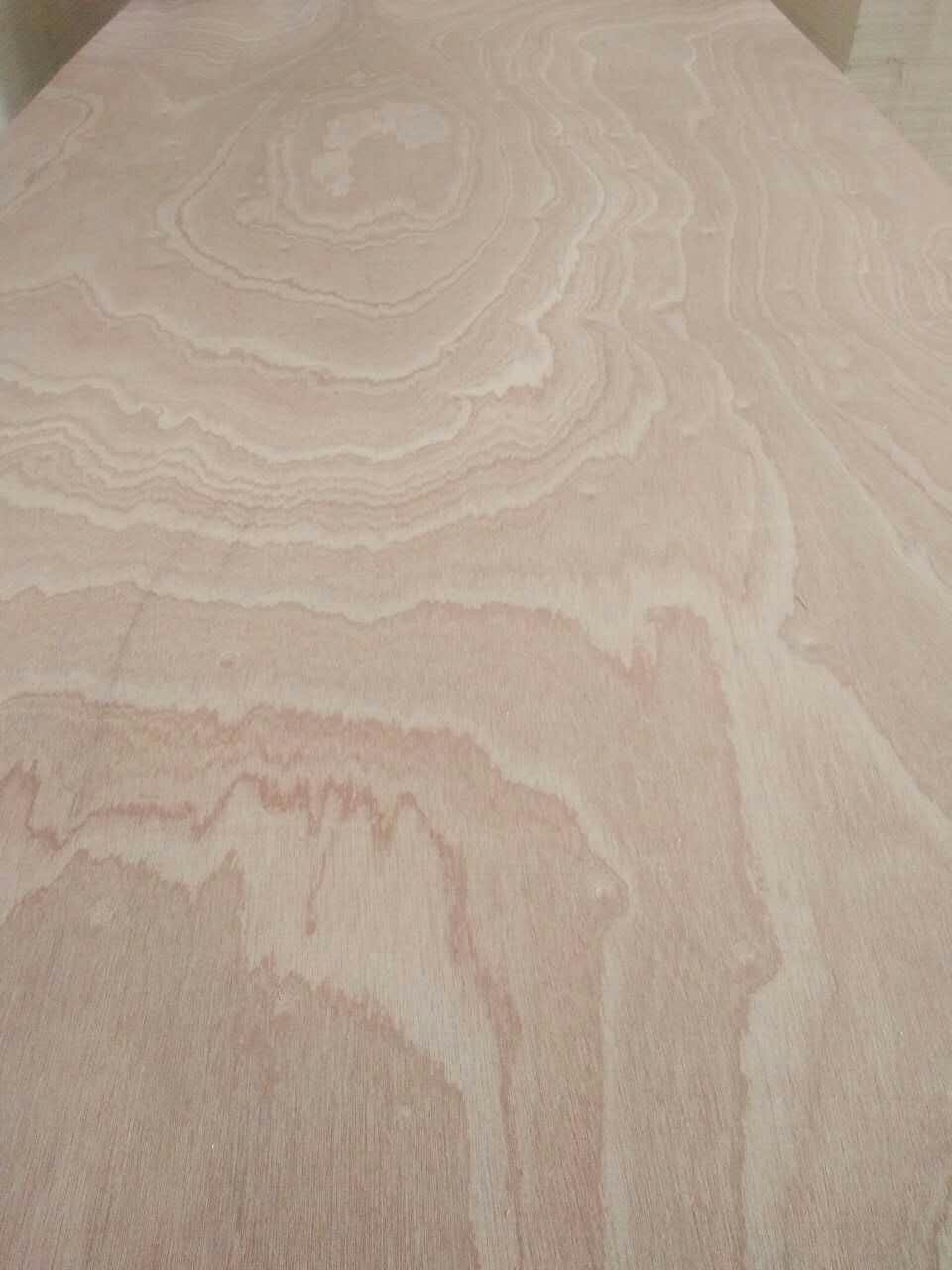 SAPELE PLYWOOD  沙比利胶合板