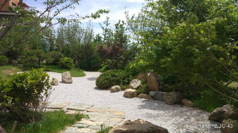 农村养生会馆庭院景观设计