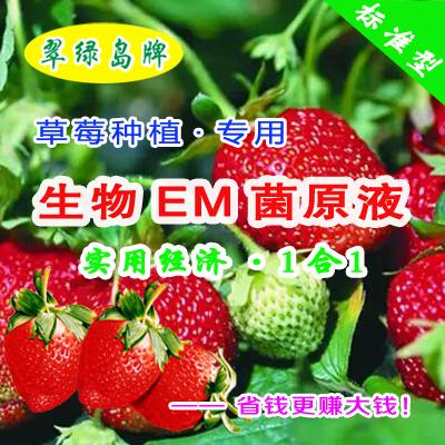 翠绿岛牌草莓种植-生物EM菌原液★能提高产量和品质!