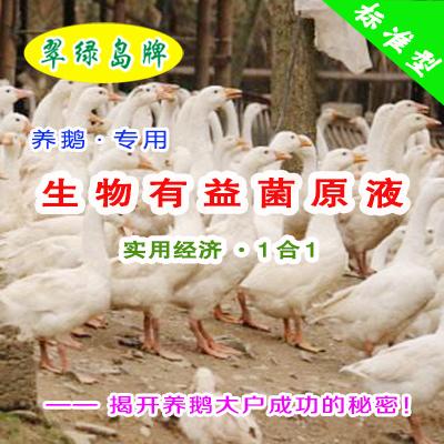 翠绿岛牌『养鹅专用-生物有益菌原液』★提高鹅的产量与品质!