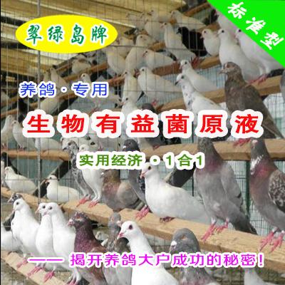 翠绿岛牌『养鸽专用-生物有益菌原液』★提高鸽的产量与品质!