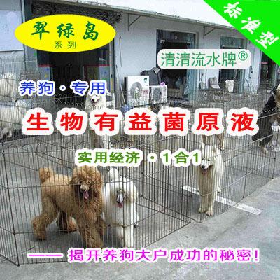 翠绿岛『养狗-生物有益菌原液』★提高狗的产量与品质!
