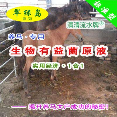 翠绿岛『养马-生物有益菌原液』★提高马的产量与品质!