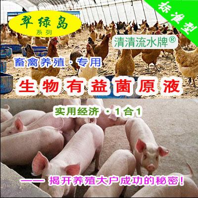 翠绿岛『畜禽养殖-生物有益菌原液』★日本产生物有益菌原液