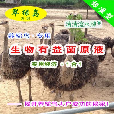 翠绿岛『鸵鸟养殖专用-生物有益菌原液』★提高产量+品质!