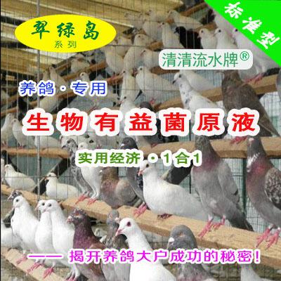 翠绿岛『养鸽专用-生物有益菌原液』★提高鸽的产量与品质!