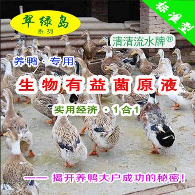 翠绿岛『养鸭专用-生物有益菌原液』★提高鸭的产量与品质!