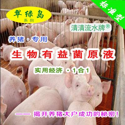 翠绿岛『养猪-生物有益菌原液』★提高猪的产量与品质!