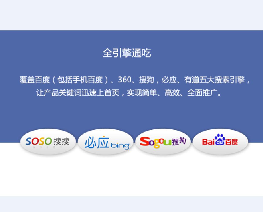 網絡營銷 案例 搜索引擎推廣