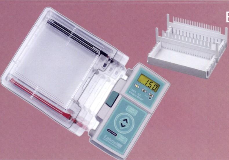 Endruo Gel XL 微型电泳系统