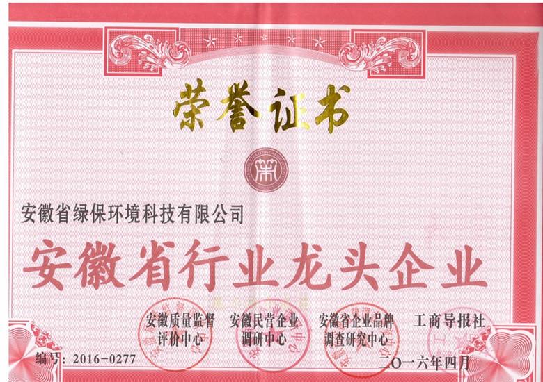 安徽省行业龙头企业