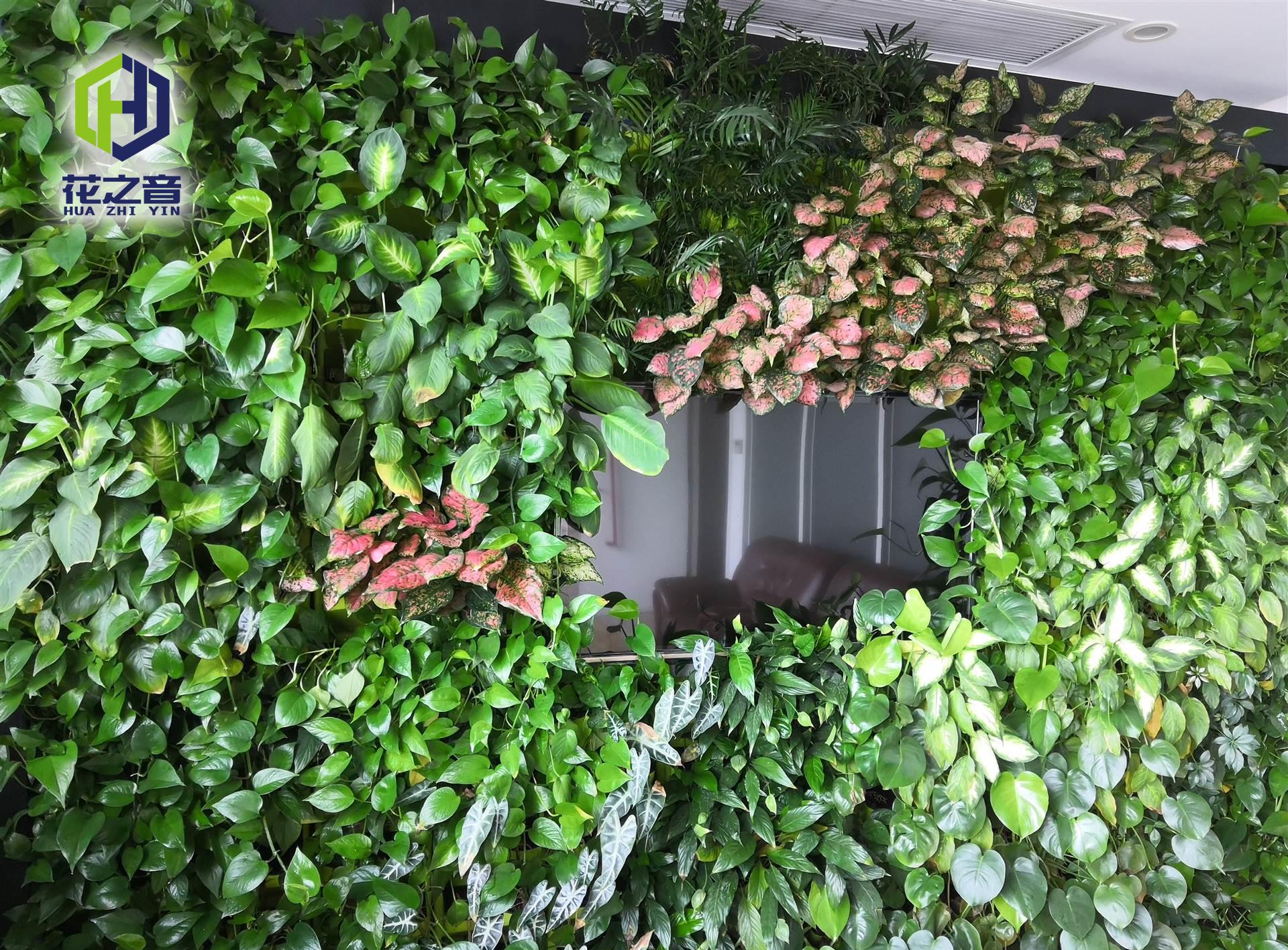 售楼部办公室垂直绿化