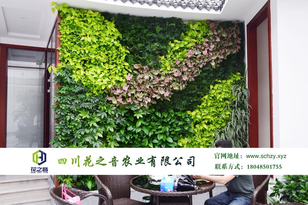 川财证券公司办公室内绿化项目