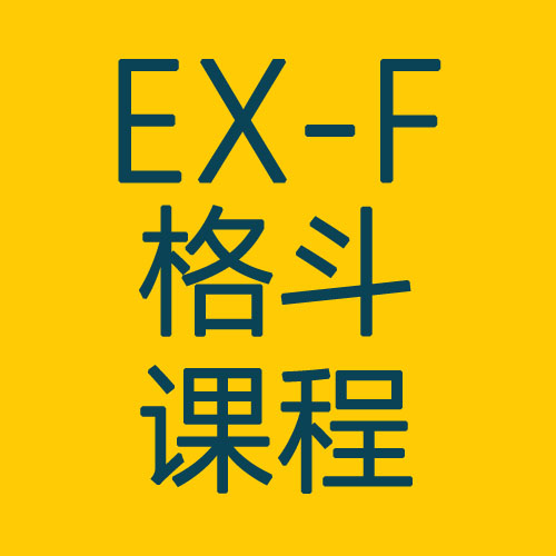 EX-F格斗课程