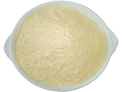 """白芸豆提取物(α-淀粉酶抑制剂 α-amylase inhibitor)""""starch blocker"""""""