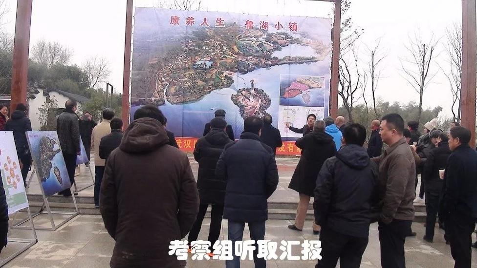 武汉市综合体评审专家组对鲁湖小镇给予高度评价