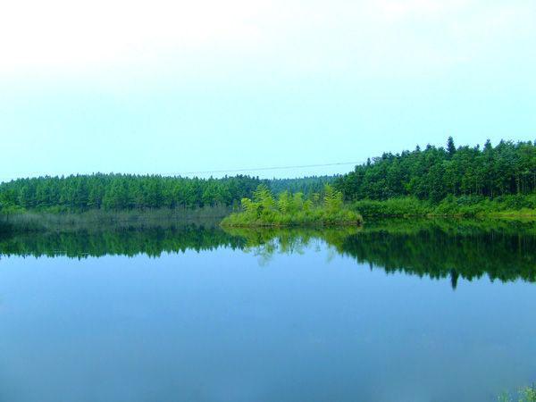 高井庙省级森林公园
