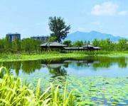 北京:城市森林公园添绿怀柔老城