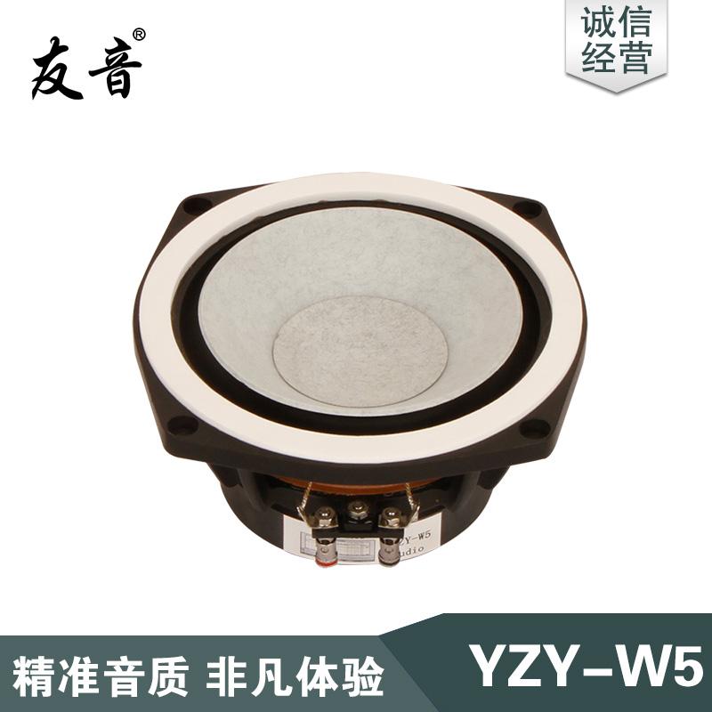 YZY-W5