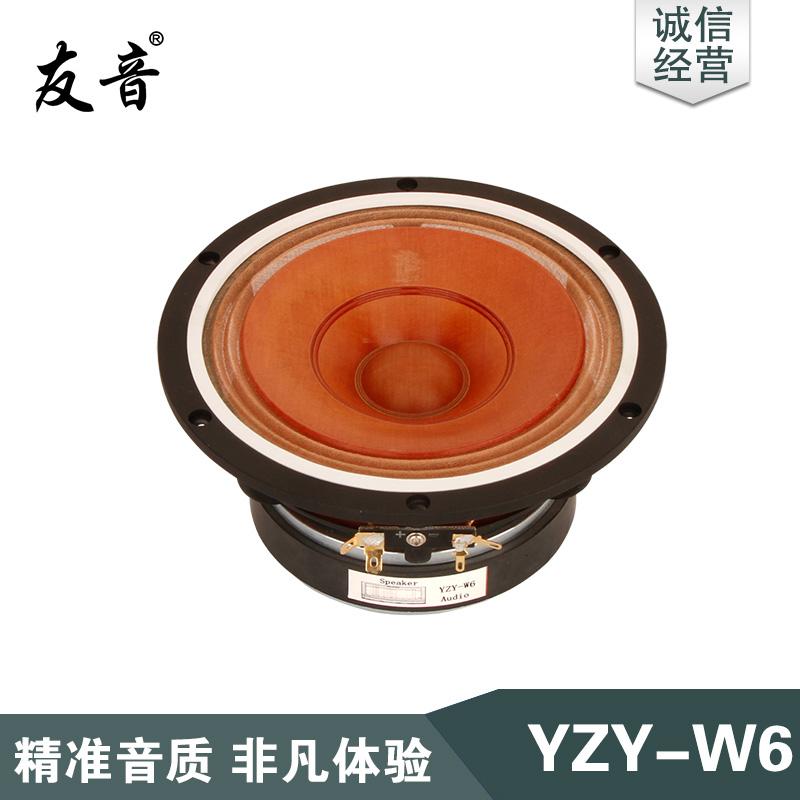 YZY-W6