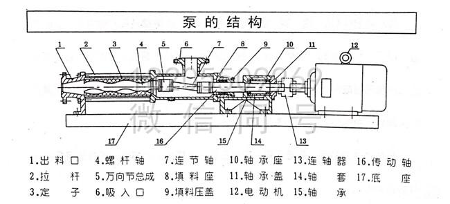 G型不锈钢单螺杆泵结构图
