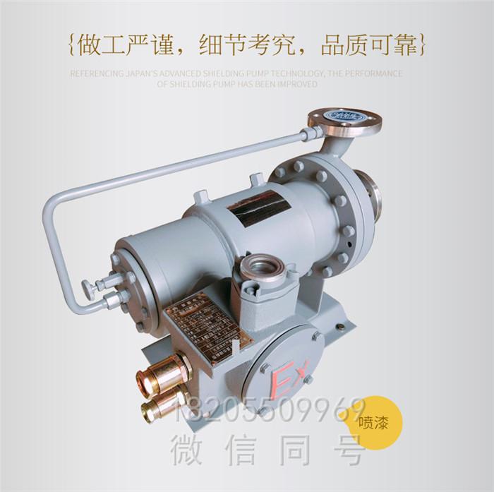 屏蔽泵工艺