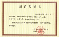鸡传染性支气管炎耐热保护剂活疫苗(三类)