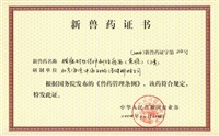 猪瘟耐热保护剂活疫苗(兔源)(三类)