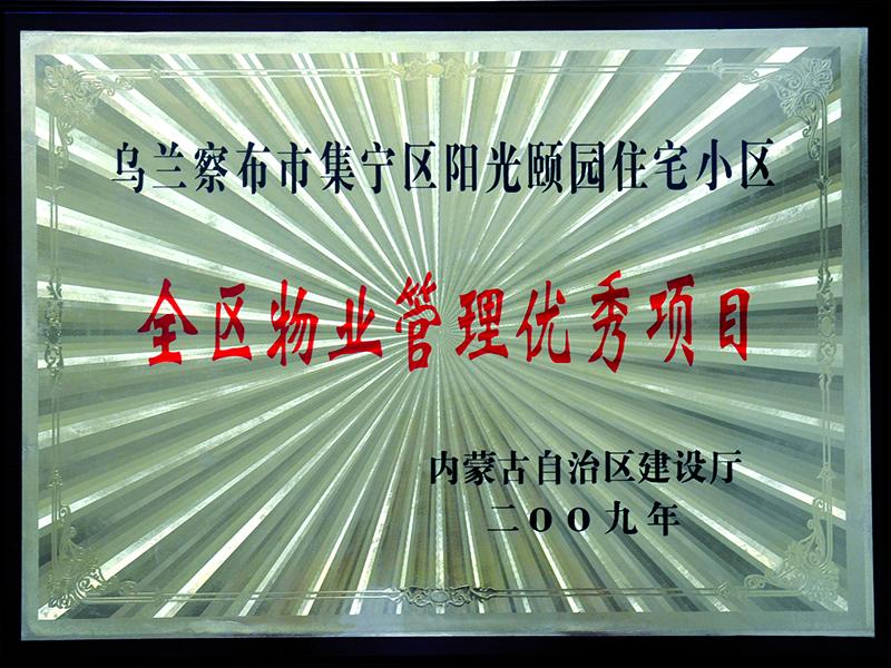 09年荣誉奖牌9