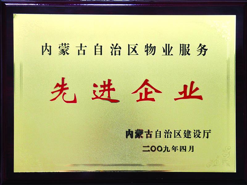 09年荣誉奖牌11