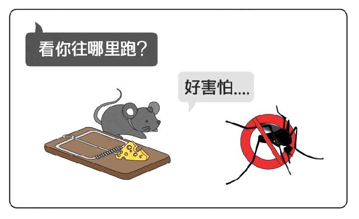 餐厅需做好防鼠灭蚊