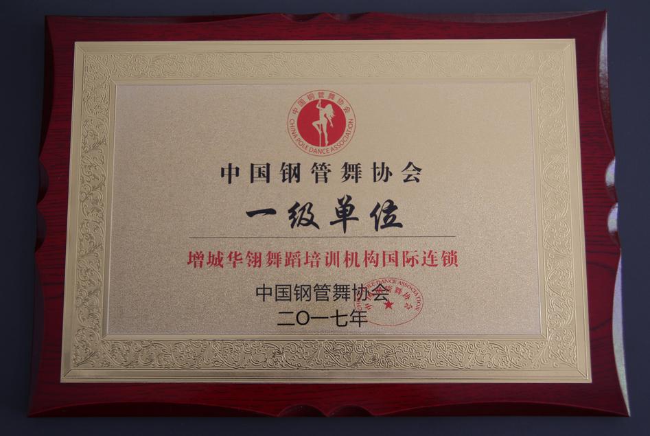 中国钢管舞协会一级单位