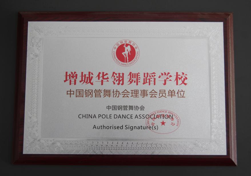 中国钢管舞协会理事会员单位