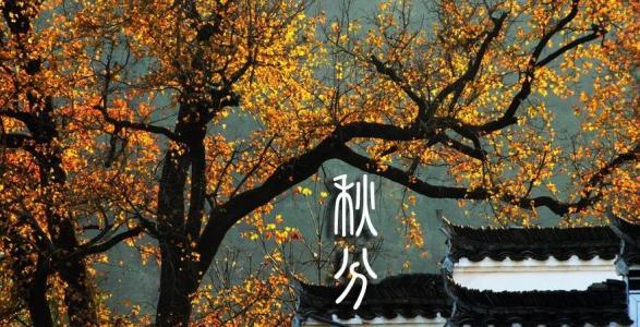 为什么将中国农民丰收节定在秋分这天?——大隆科技www.hkdalong.com