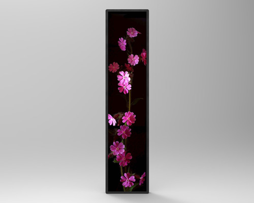 Picture of 57.5inch Bar Type Display