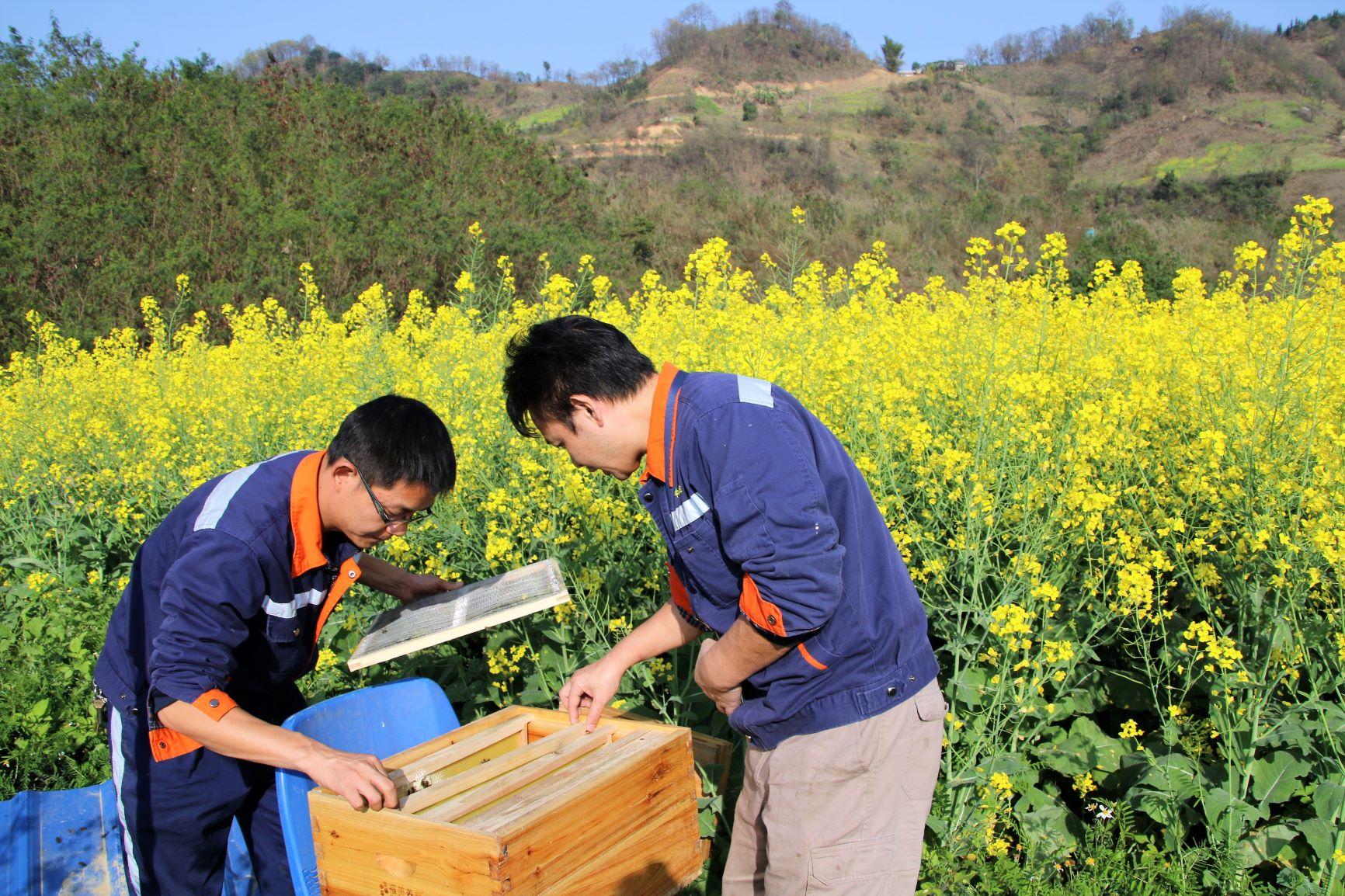 雷涛-04锦丰生态园内春意盎然