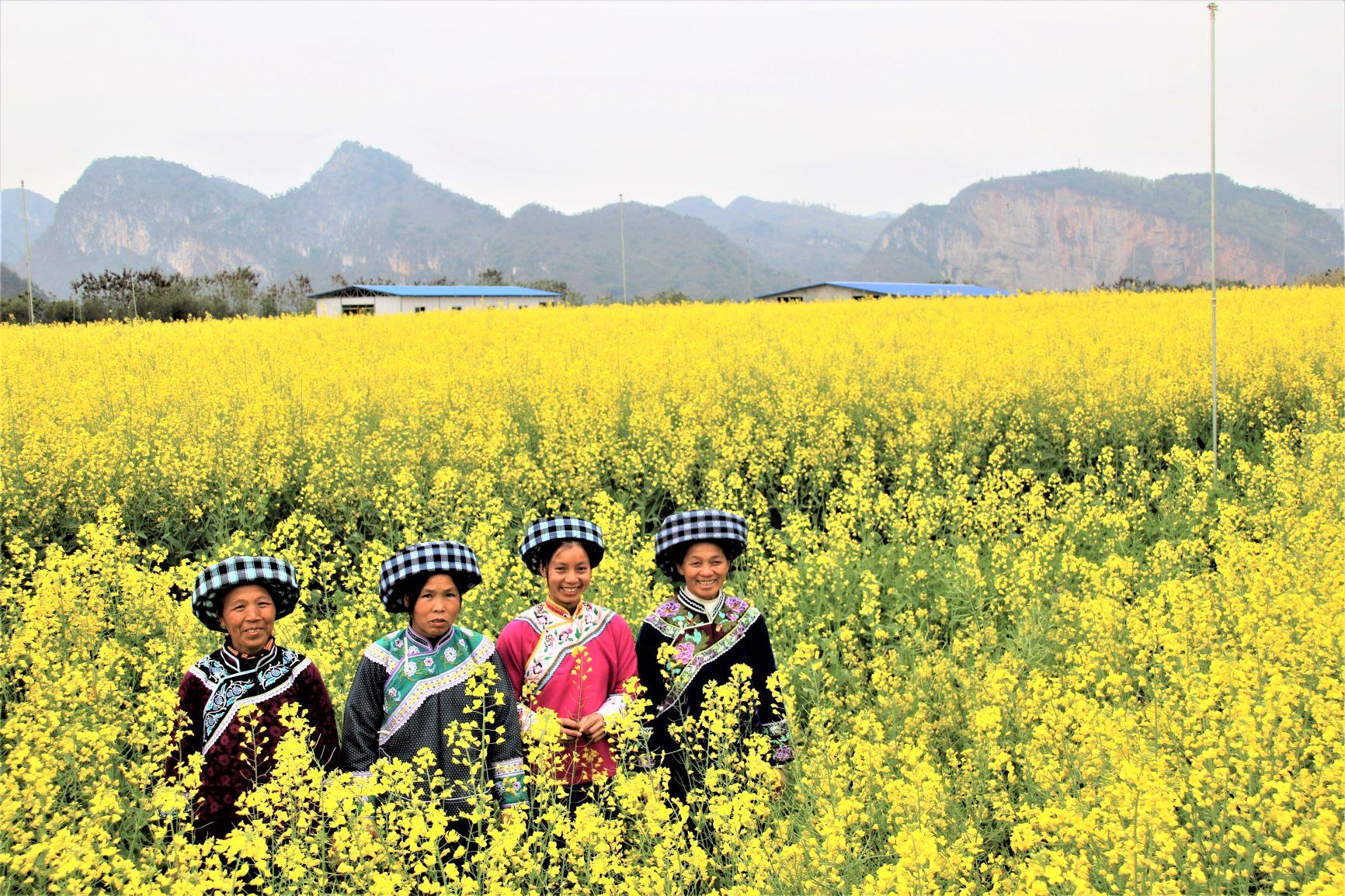 雷涛-05锦丰生态园内春意盎然