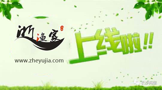 郑州市浙渔家餐饮管理有限公司网站建成上线